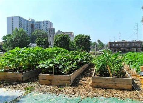 Urban Organic Gardening - urban farming tag archdaily