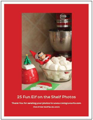 Picture Of The On The Shelf by 25 Of The Best On The Shelf Ideas Printables