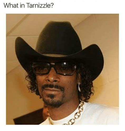 What Is A Me Me - what in tarnizzle meme on me me
