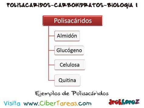 imagenes html ejemplos ejemplos de polisac 225 ridos en los carboh 237 dratos biolog 237 a
