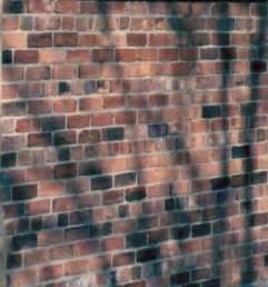 Section Of Brick Wall English Garden 169 Tom Jolliffe Garden Wall Bond Brickwork