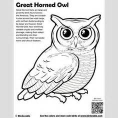 coloring page of great horned owl abc owl dot to dot page from making learning fun owl