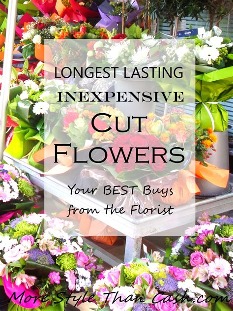 Inexpensive Flowers by Lasting Inexpensive Cut Flowers