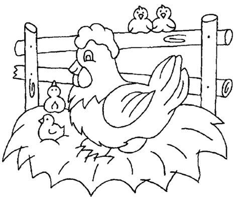be cute como se colocan las u 241 as de porcelana o acrilico galinhas e pintinhos para colorir 01 desenhos e riscos