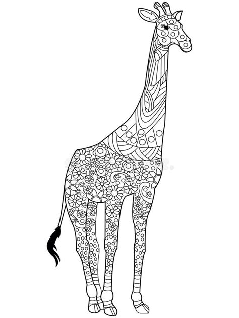 zentangle giraffe coloring pages giraffe coloring book vector for adults stock vector
