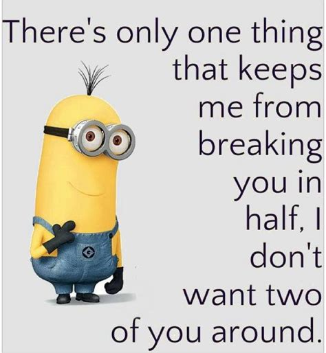 Funny Quote Memes - minion memes quotes