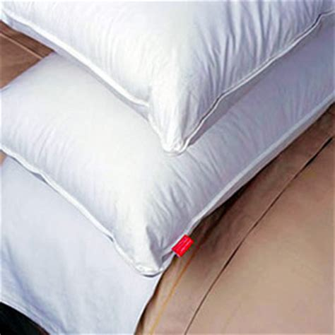 bed bug pillow pillow case covers bed bugs nyc pest control