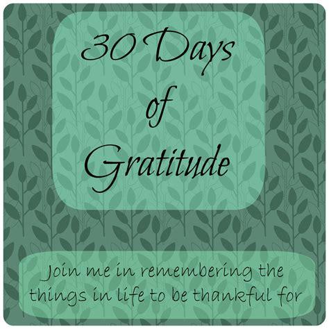 the gratitude experiment a 30 day journal books 30 days of gratitude how we flourish