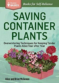 basic overwintering saving container plants overwintering techniques for