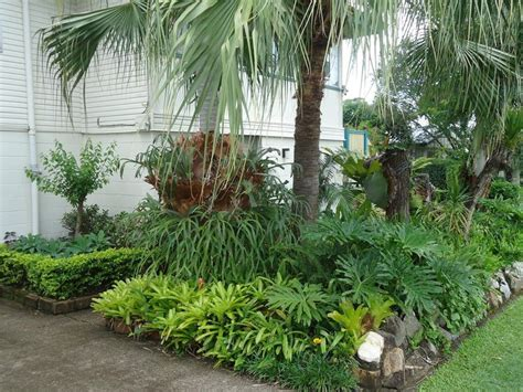 Florida Gardening Ideas 17 Best Images About Plants On Pinterest Gardens Backyard Landscape Design And Tropical