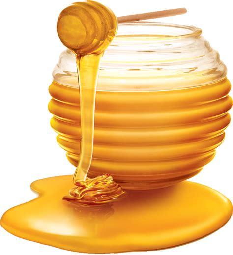 honey png