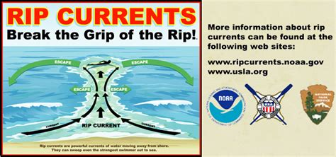 rip diagram rip currents charleston county parks and recreation