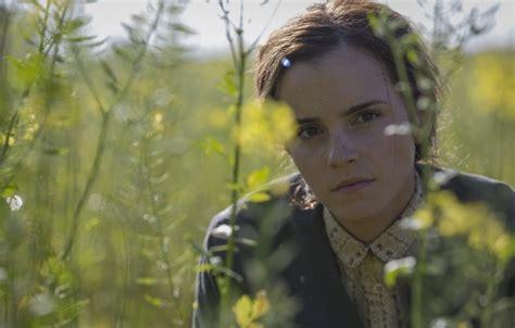 film emma watson colonia wallpaper field summer grass the film dandelions emma