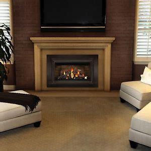 Small Fireplace Inserts by Napoleon Gas Fireplace Insert Gdizc Direct Vent Small