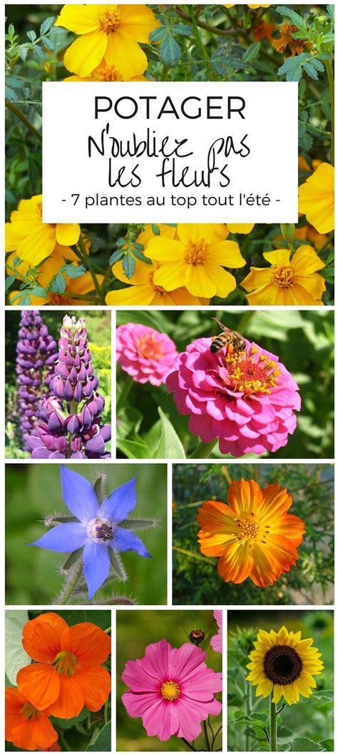1000 id 233 es sur le th 232 me jardins de fleurs sauvages sur