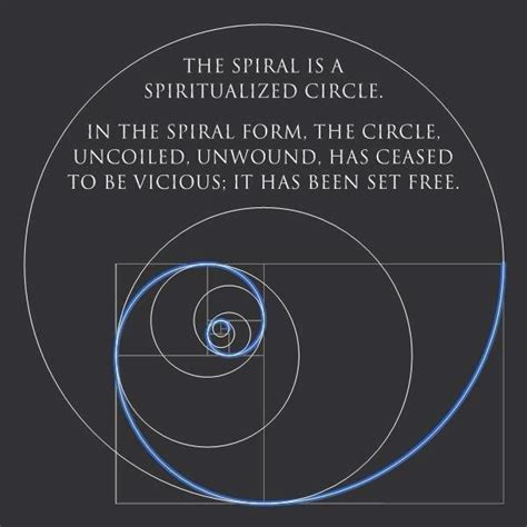 doodle meaning spiral top 25 ideas about fibonacci spiral on