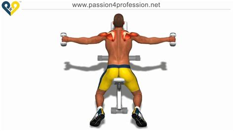 bent over lateral raises on incline bench shoulders exercises bent over lateral raises on incline