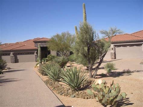 backyard desert landscaping desert landscaping ideas