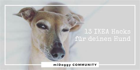 ikea badematte hund 13 ikea hacks f 252 r deinen hund midoggy community