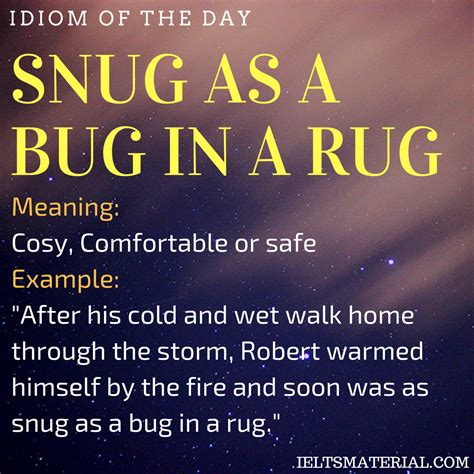 Snug As A Bug In A Rug Book by Snug As A Bug In A Rug Idiom Of The Day For Ielts Speaking
