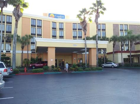 comfort inn maingate kissimmee hotel picture of comfort inn maingate kissimmee