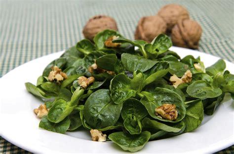 coltivare insalata in vaso come coltivare la valeriana in vaso o nell orto non sprecare