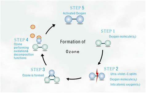 Ozone Water Detox Symptoms by Tuv Certification For Water Cd Type Ozone Generator Tcb