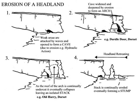 caves arches stacks and stumps diagram what i learnt in geography this week coastal landforms