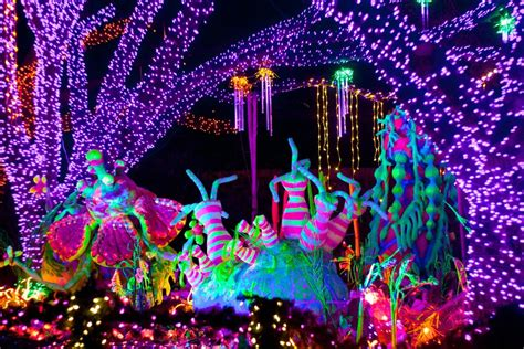 Image Gallery Houston Zoo Lights 2015 Lights Zoo