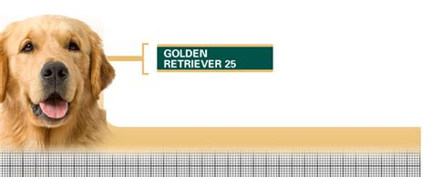 royal canin golden retriever 25 royal canin golden retriever 25 расскажем где купить