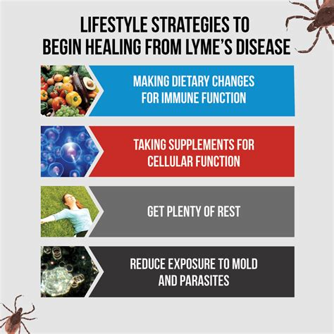 Lyme Disease Detox Center by Lyme 4strategies Drjockers