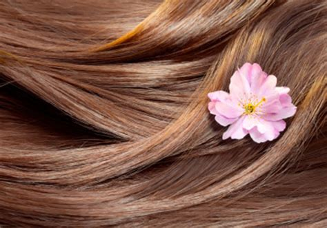 images of hair what to eat for healthy hair bbc good food