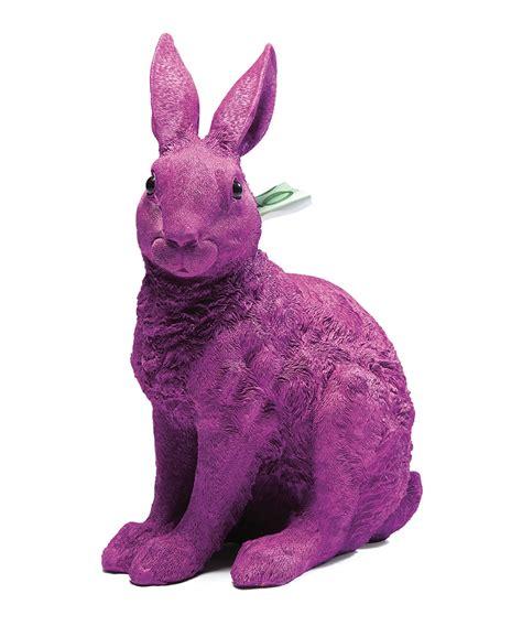 Purple Rabbit purple rabbit