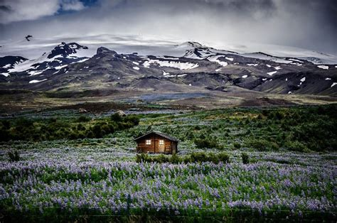 Cottage Tiny House 20 perfect lonely little houses blending in nature for the