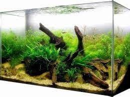 Pompa Pembersih Aquarium toko aquarium dan etalase kaca harga aquarium