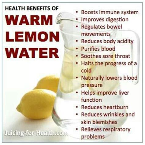 warm lemon water before bed lemon water benefits health and things to do on pinterest