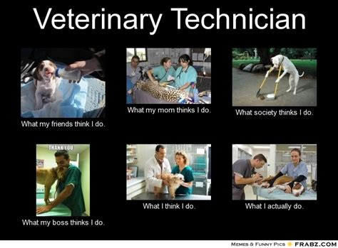Vet Memes - veterinary technician what people think i do what i