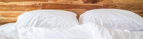 Ungeziefer Bett by Bettwanzen Im Hotel Tipps Gegen Ungeziefer Im Bett