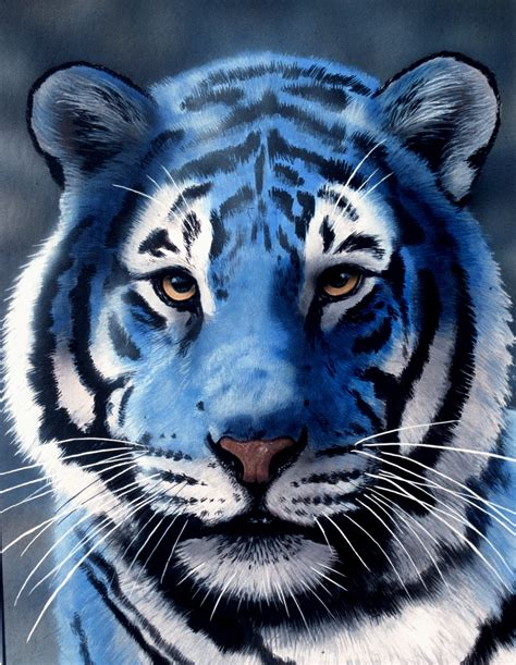 Blue Tiger shukernature from black lions to living sabre tooths my