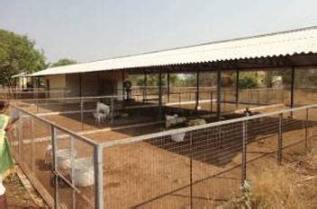 Goat Farm House Design Welcome To Tamilnadu Veterinary Animal Sciences University Tanuvas