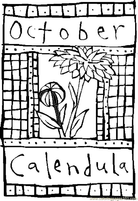 10 october calendula 2 coloring page free flowers