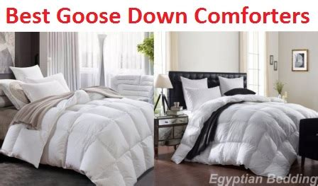 best goose down comforters top 10 best goose down comforters in 2018 complete guide