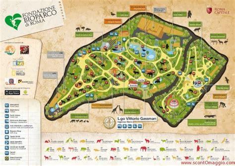 ingresso zoo roma bioparco di roma buono sconto e ingresso gratis