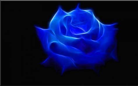 imagenes hd feliz noche con rosas azules rosa azul 3d 1680x1050 fondos de pantalla y wallpapers