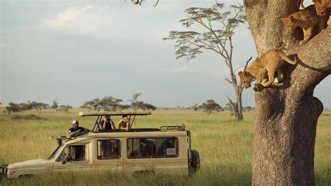 5 Safari Stuff To See by Safari Holidays