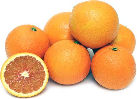 cara cara cara cara oranges information recipes and facts