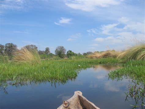 Cruising The Okavanga Delta Foto Van Okavango Delta