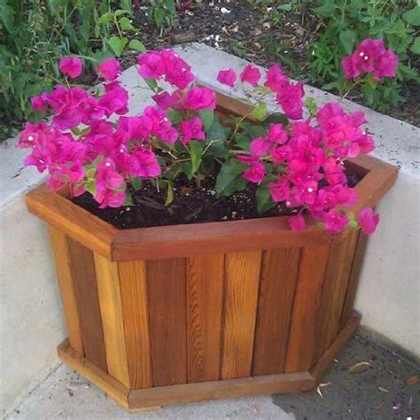 Planter Box Bottom by 17 Best Images About Gardening On Wandering
