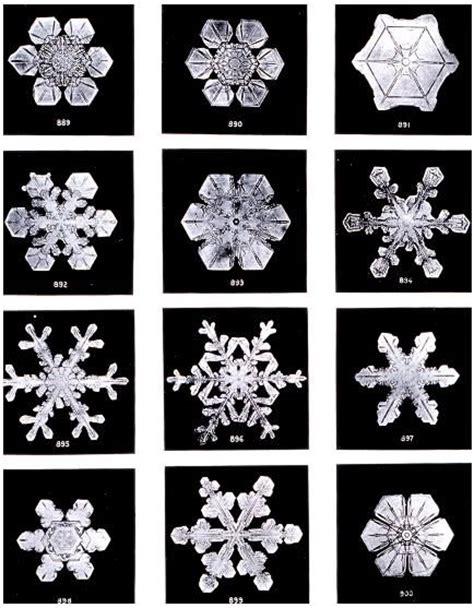 No Same no two snowflakes are alike