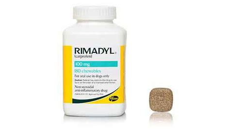 rimadyl dosage for dogs using rimadyl carprofen for dogs petcarerx